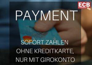 Relevanz von Zahlungsoptionen für den internationalen E-Commerce