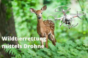 Wildtierrettung mittels Drohne